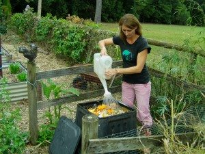 adding food scraps and water