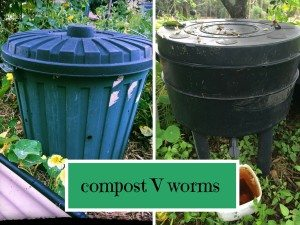 compost v worms