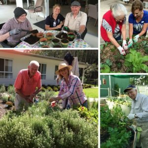 FREE Webinar Gardening Programs in an Aged Care Setting
