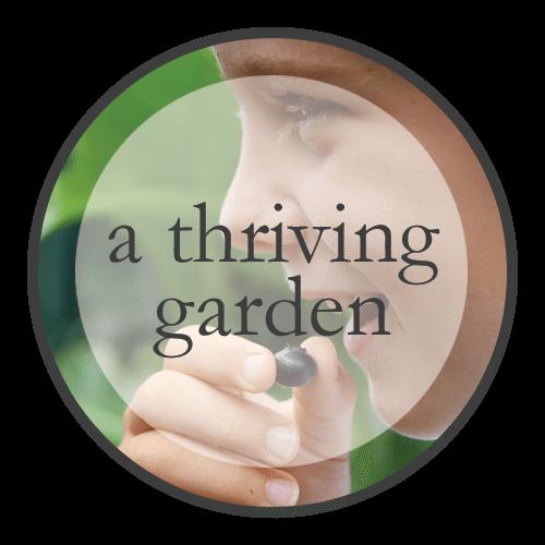 A Thriving Garden