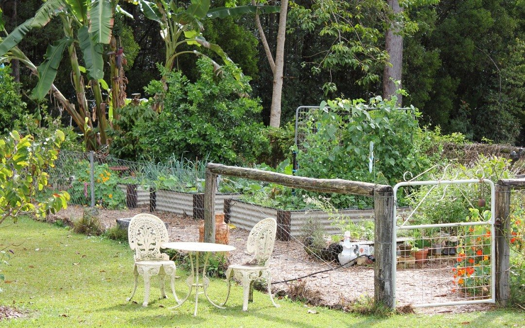How to Plan Your Perfect Garden