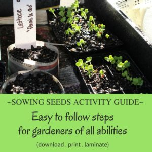 sowing-seeds-activity-guide