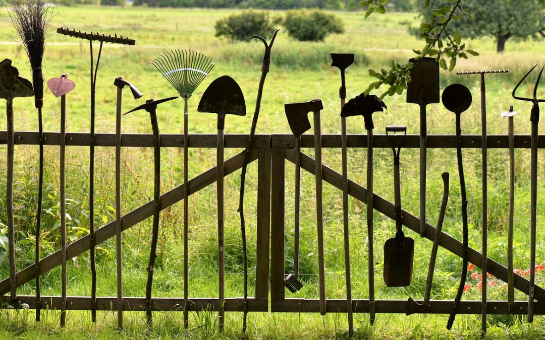 5 Ways to Maintain your Gardening Tools and Equipment