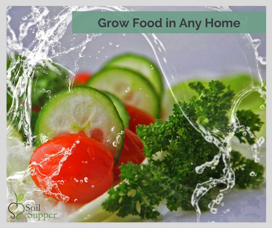 Grow Food in Any Home
