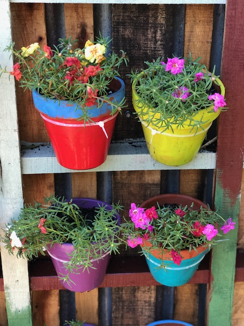 Top 5 Therapeutic Gardening Activities from 2018