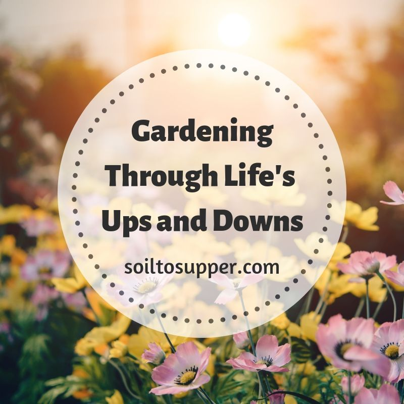 Gardening Through Life's Ups and Downs