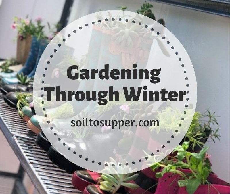 Gardening Through Winter